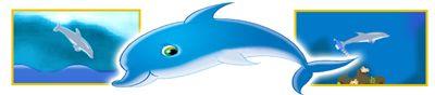delphin olympiade